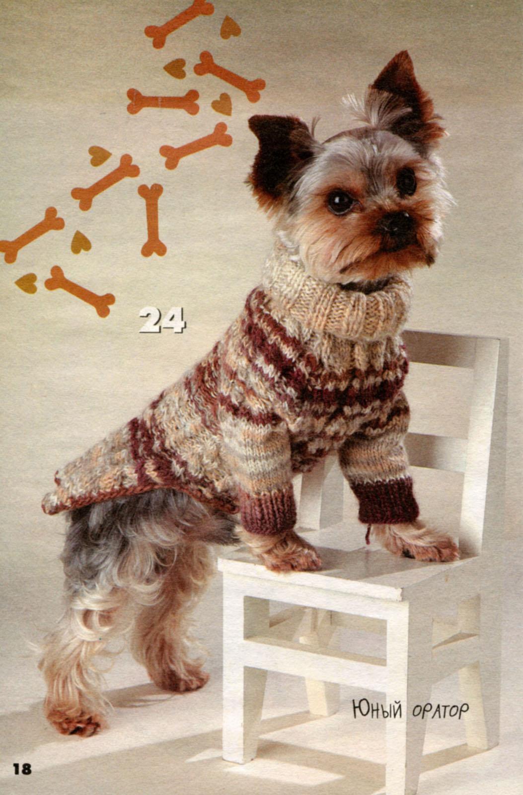Связать свитер для йорков своими руками